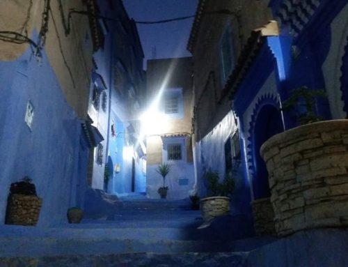 1 Day trip — Essaouira