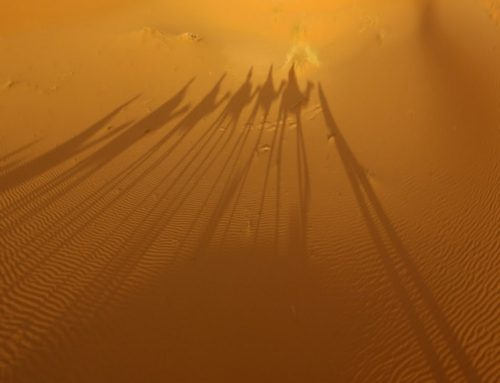 1 Night camel trekking in desert Merzouga
