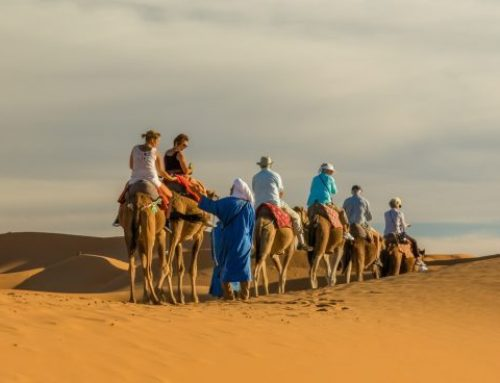 4 Days tour from Fes- Sahara desert to Marrakech