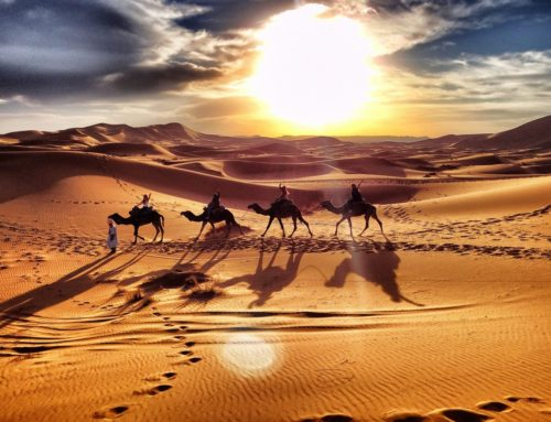 SUNSET  CAMEL TOUR MERZOUGA
